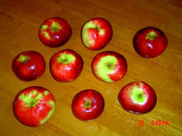 APPLE Hetlina