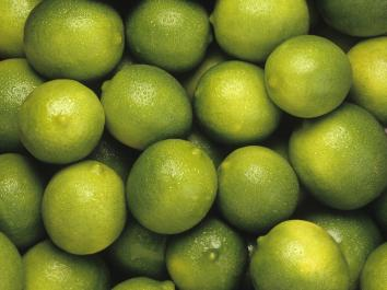 LIME Bearss (Tahitian)