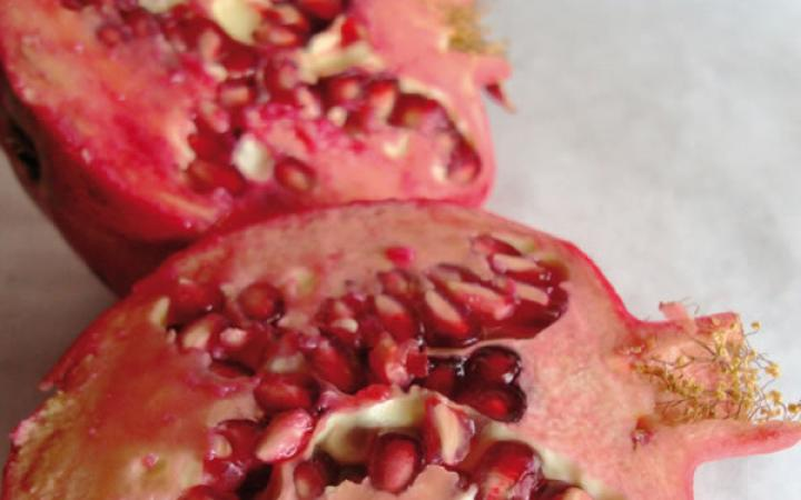 Fruit Trees / Pomegranates / Wonderful